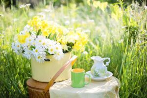 daisies next to cup of coffee with carafe outside